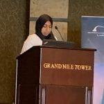 Professor El-Ghazaly giving a presentation