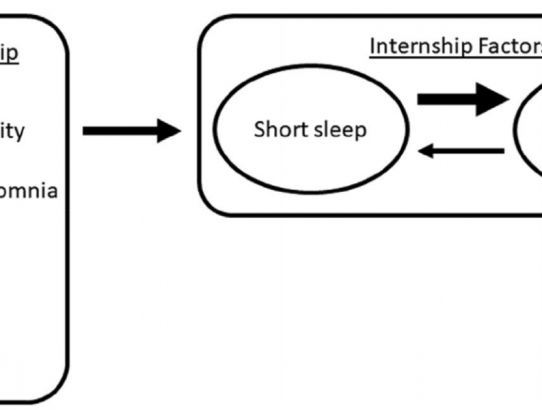 Insomnia symptoms and short sleep predict anxiety and worry in response to stress exposure: a prospective cohort study of medical interns