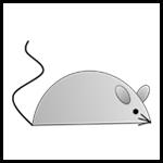 Mouse_Thumbnail-border