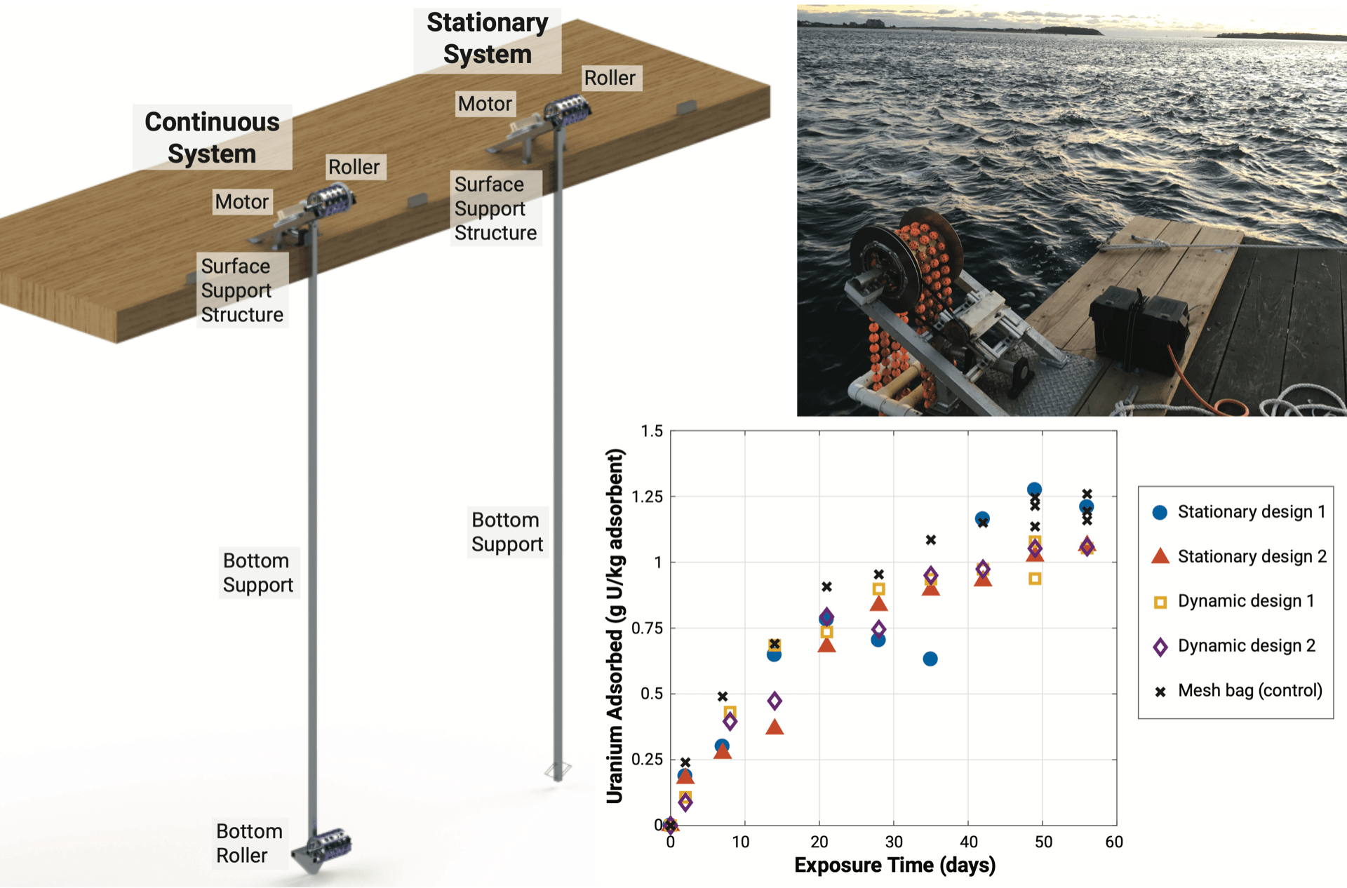 Results of an Ocean Trial of the Symbiotic Machine for Ocean uRanium Extraction