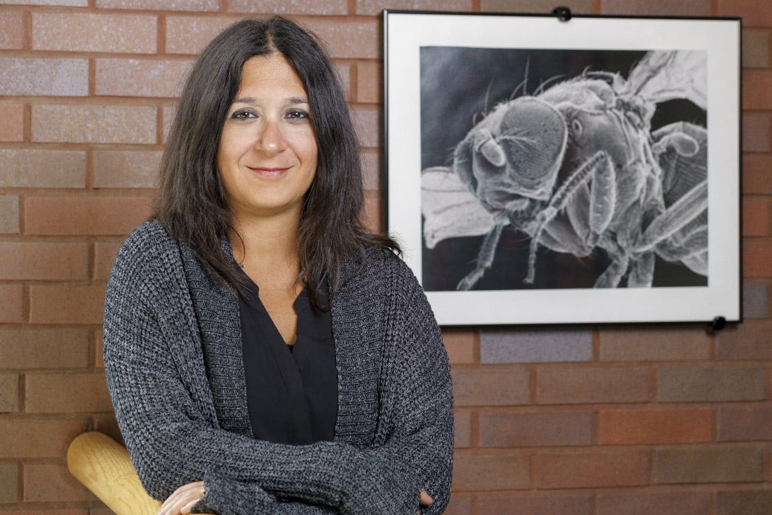 Nilay Yapici (Neurobiology & Behavior)