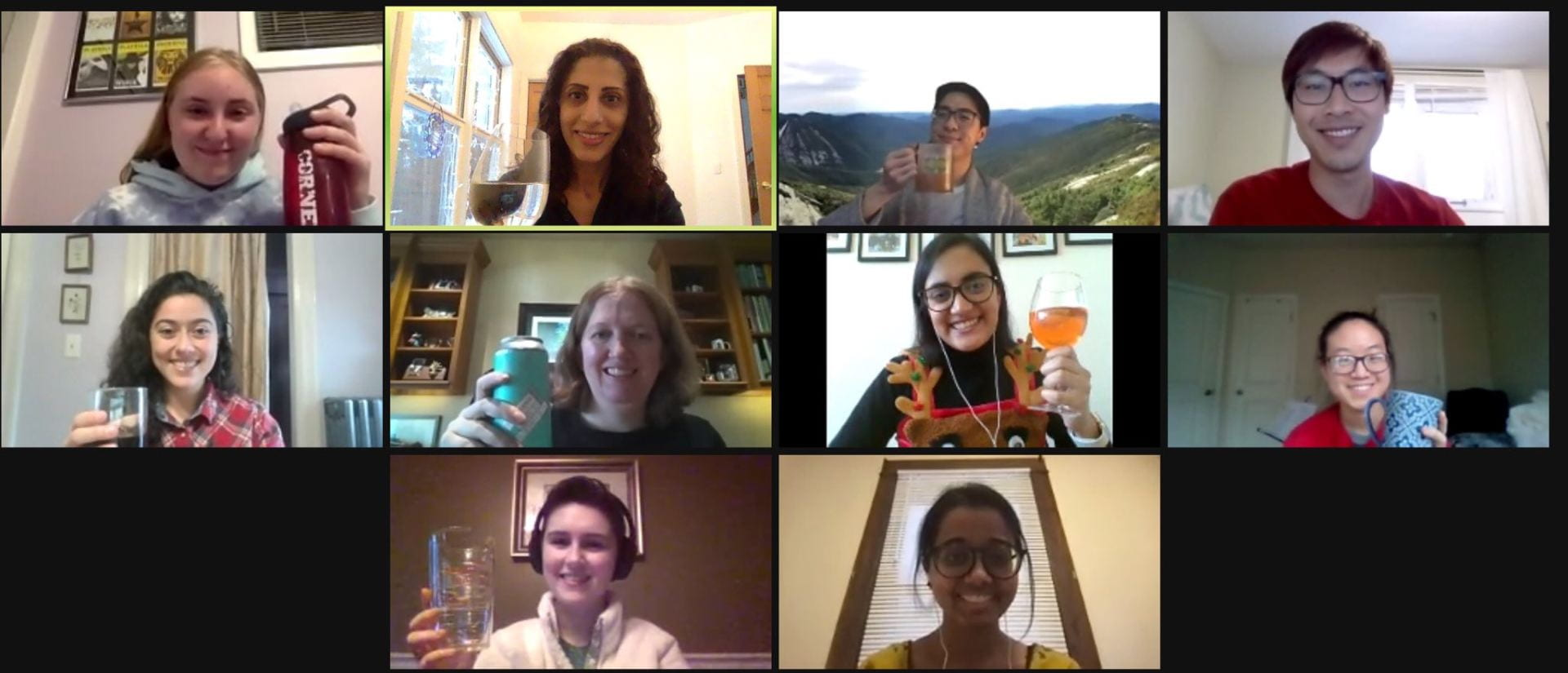 Picture of Andarawis-Puri Lab members on Zoom celebrating the end of 2020.
