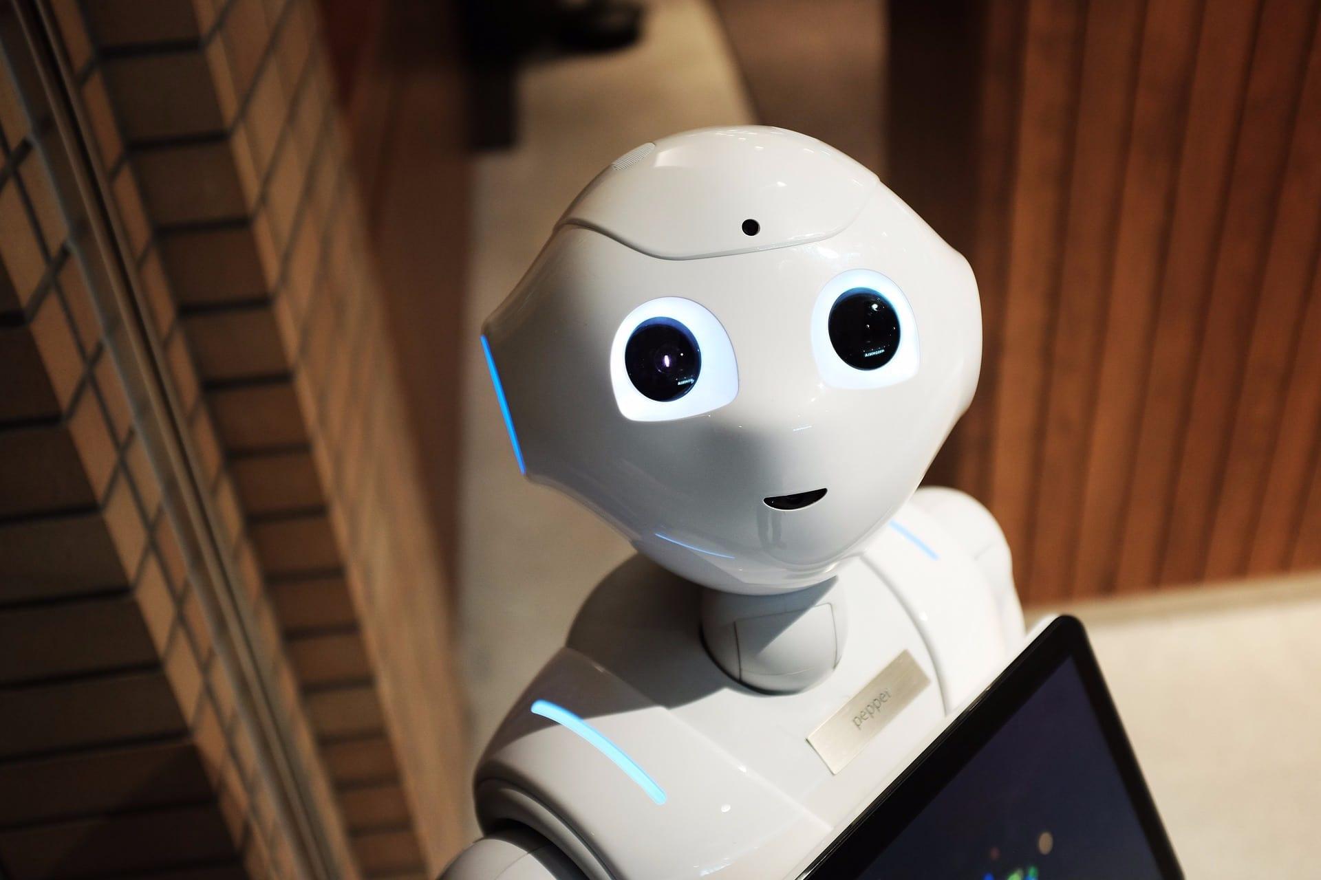 Robot looking at the camera