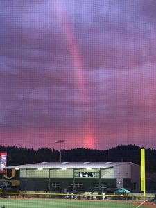 oregon rainbow