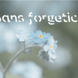 Sans forgetica with a picture of forget-me-not