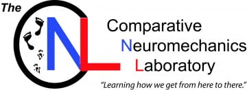 Comparative Neuromechanics Laboratory