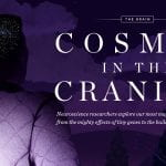 Cosmos in the Cranium