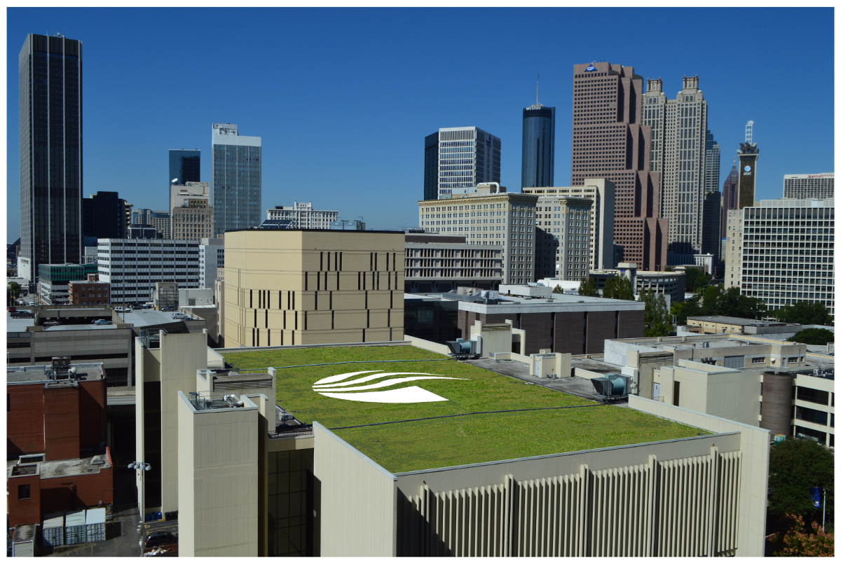 Green Roof on Sports Arena