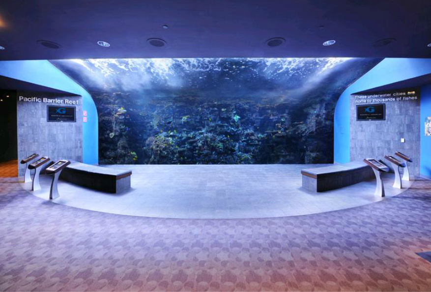 Hosting events at the Georgia Aquarium