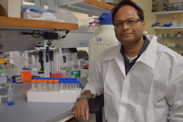 Kumar lab profiled in the Ellsworth American