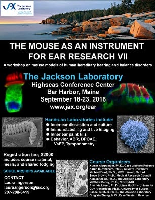 The Mouse as an Instrument for Ear Research VII