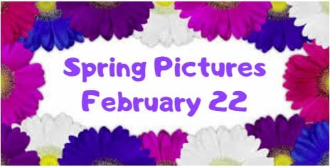 Spring Pictures Feb 22, 2019