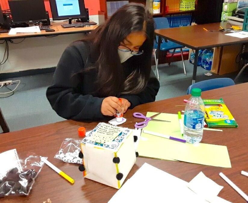 LMS Kleenex Box Project serves dual purpose