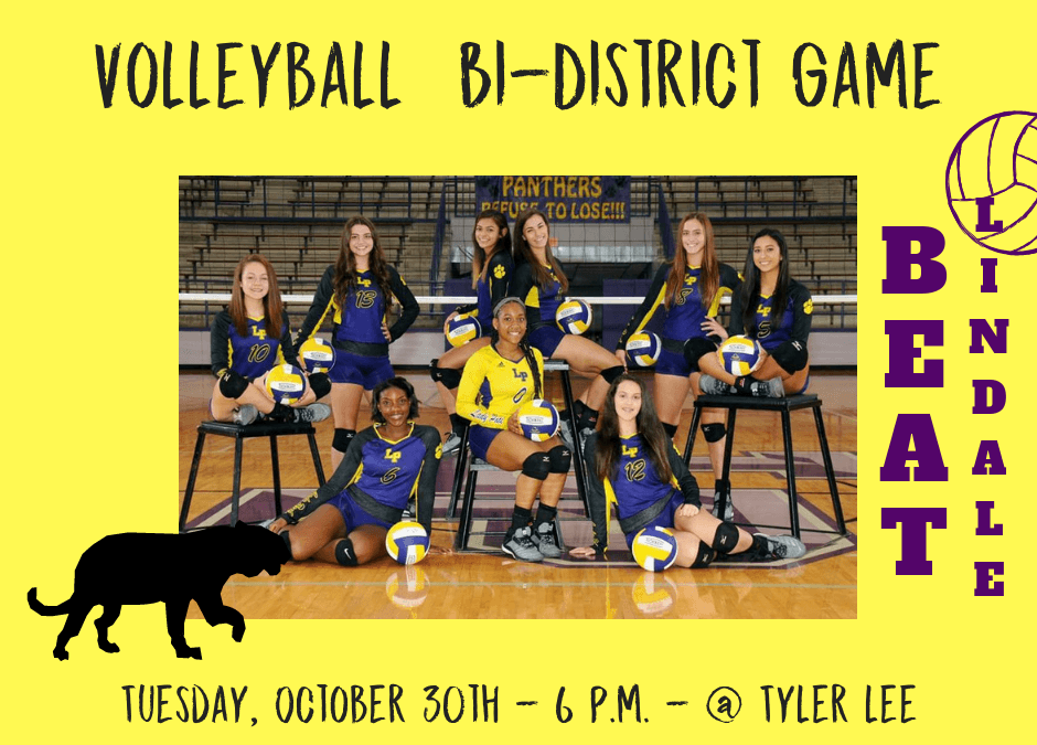 Volleyball playing for Bi-district
