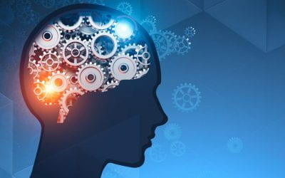 School-based mindfulness training is linked to neural plasticity and improved cognitive control among sixth graders