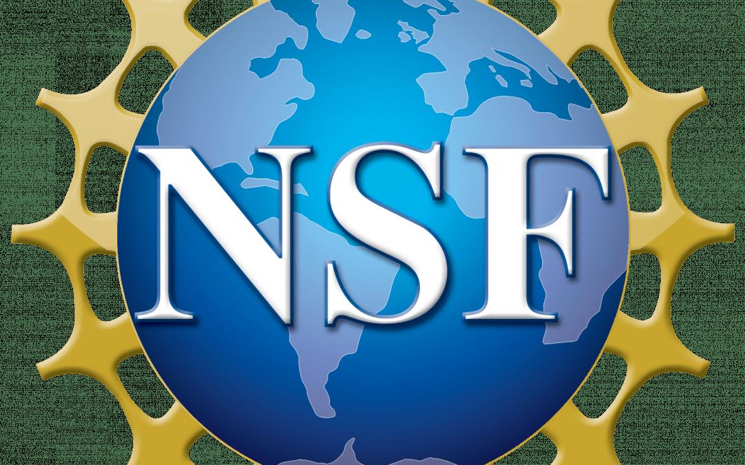 New NSF Grant