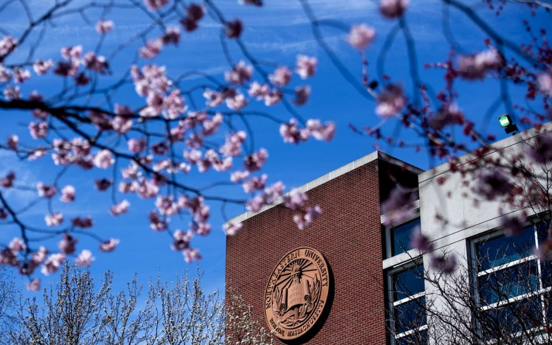 Faculty and Staff Tech Update 01/19/21: Resources to Spring into the New Year