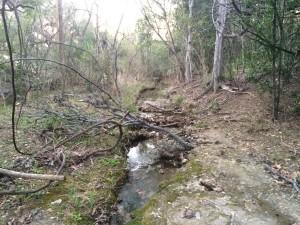 Creek #2