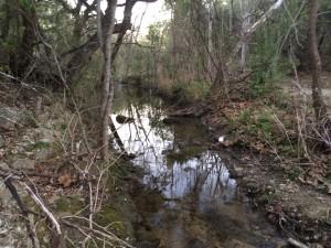 Creek #1