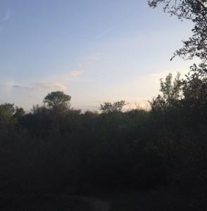 sunseteek