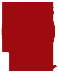 q_logo_vertical