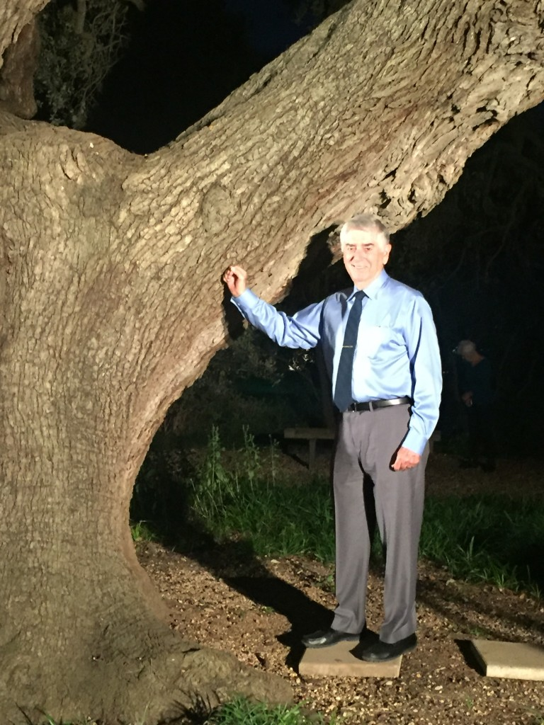 Bob Wilems ('63) under the Sorin Oak with his honorary class ring.  (Photo courtesy Joe DeMedeiros.)