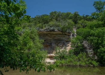 Seismic Wall from accorss the creek at the Barton Creek Greenbel