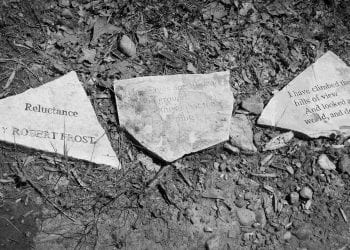Trails of Remembrance, 2019-04-28, Eloise Woods Natural Burial P