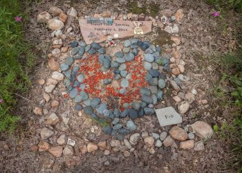 The Emotions of the Job, 2019-04-29, Eloise Woods Natural Burial