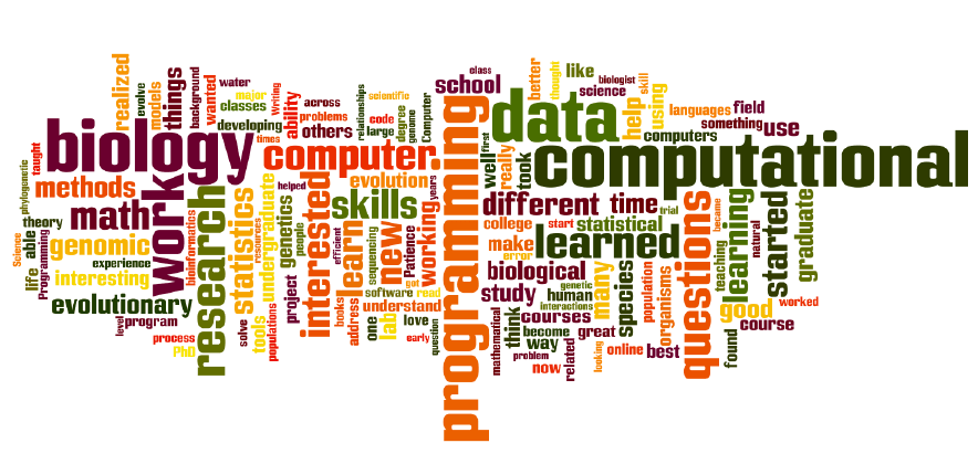 Word Cloud of the cumulation of skills within the center