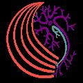Brain Aging Physiology Lab