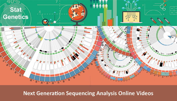 Next Generation Sequencing Analysis