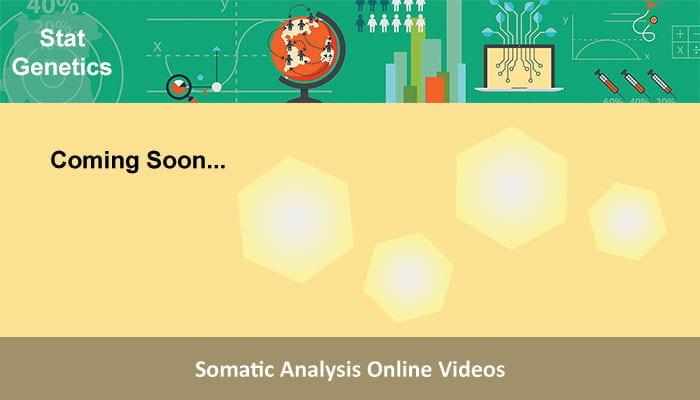 Somatic Analysis