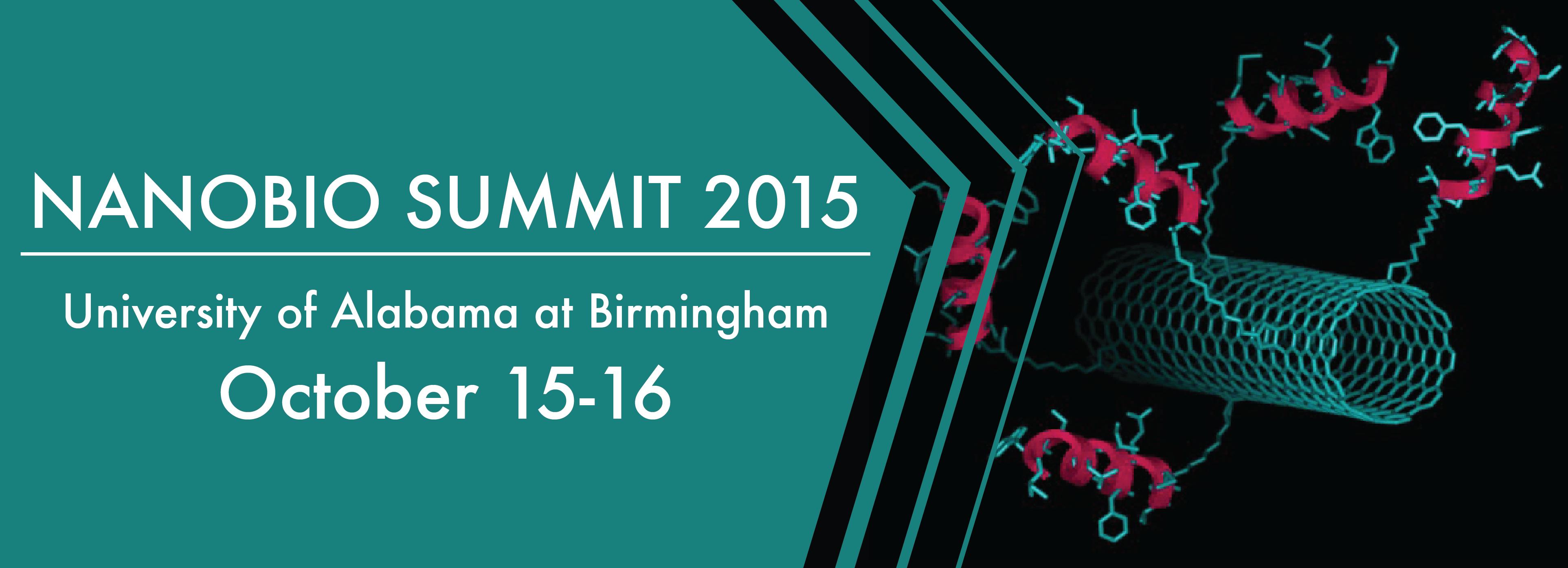 2015 NanoBio Summit