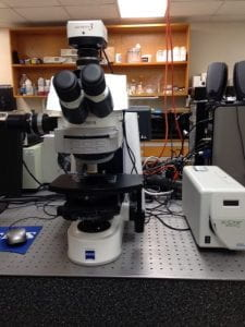 Spectrofluorometer with microscope coupling optics