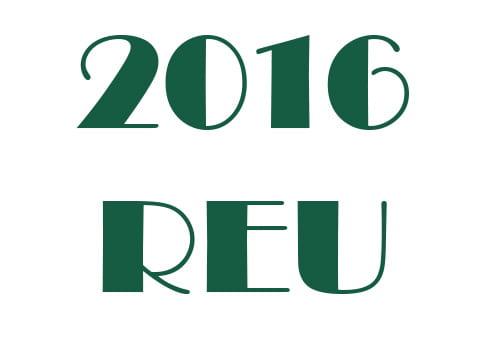 Application Deadline for REU Ended April 1, 2016