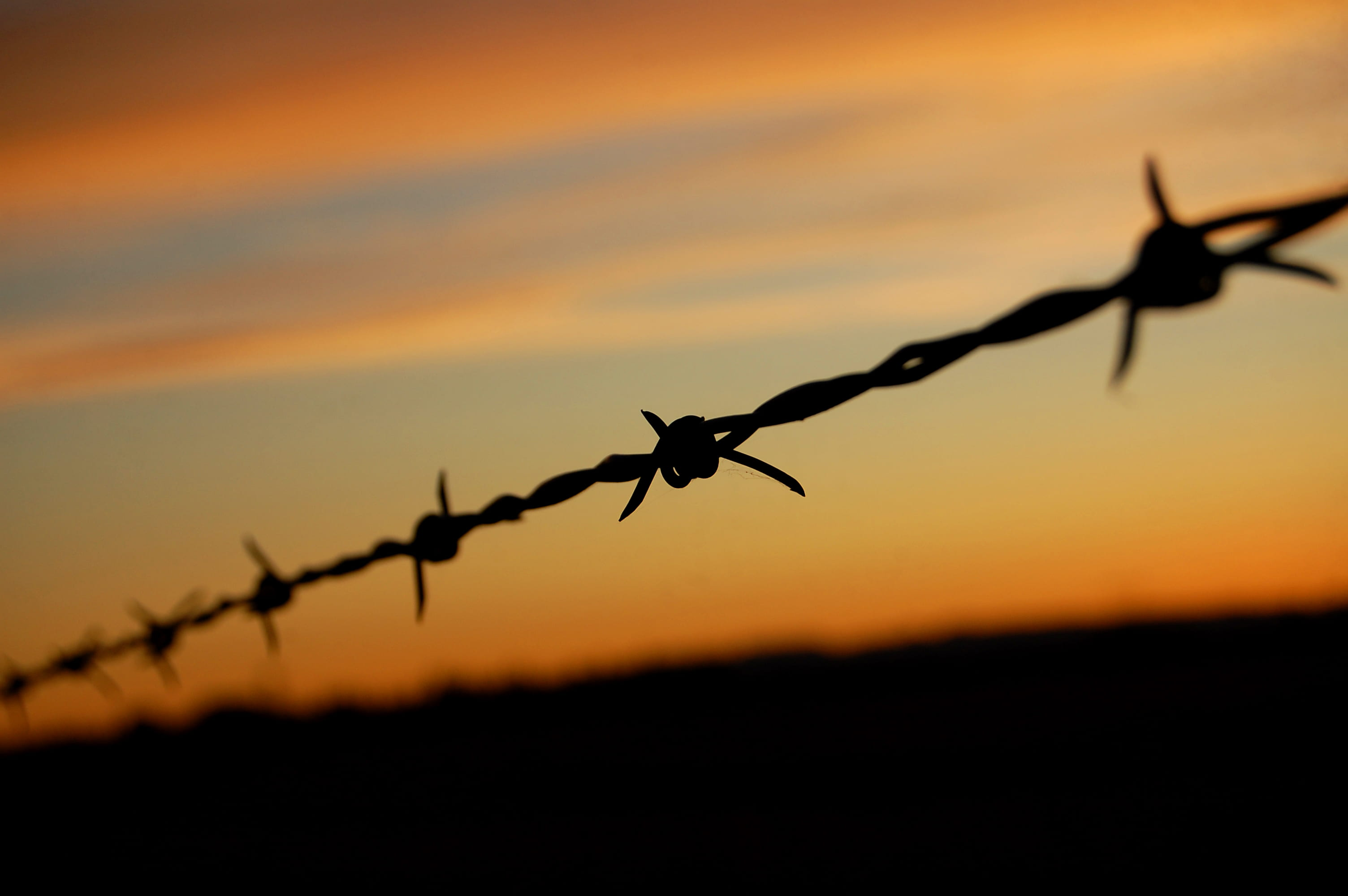 Barbwire fence. Source: Edmund Garman, Creative Commons