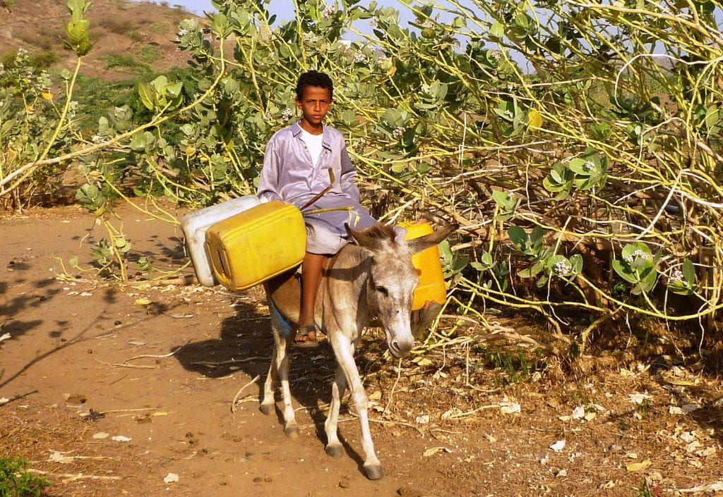 a picture of a Yemini boy on a donkey with gerry cans for water