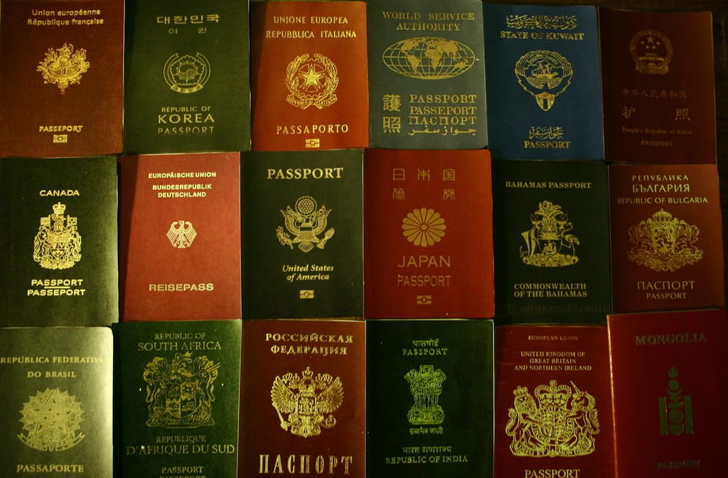 a picture of a bunch of passports