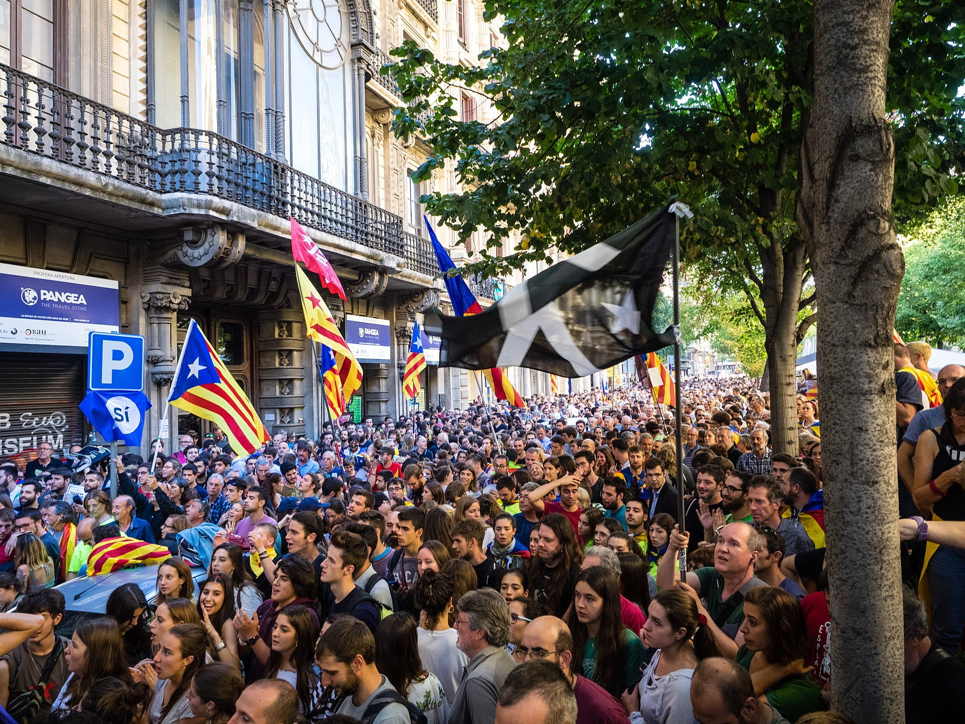 Catalan protestors demonstrate for independence.