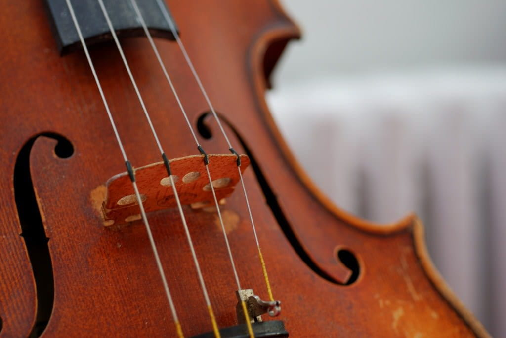 a close-up of a violin