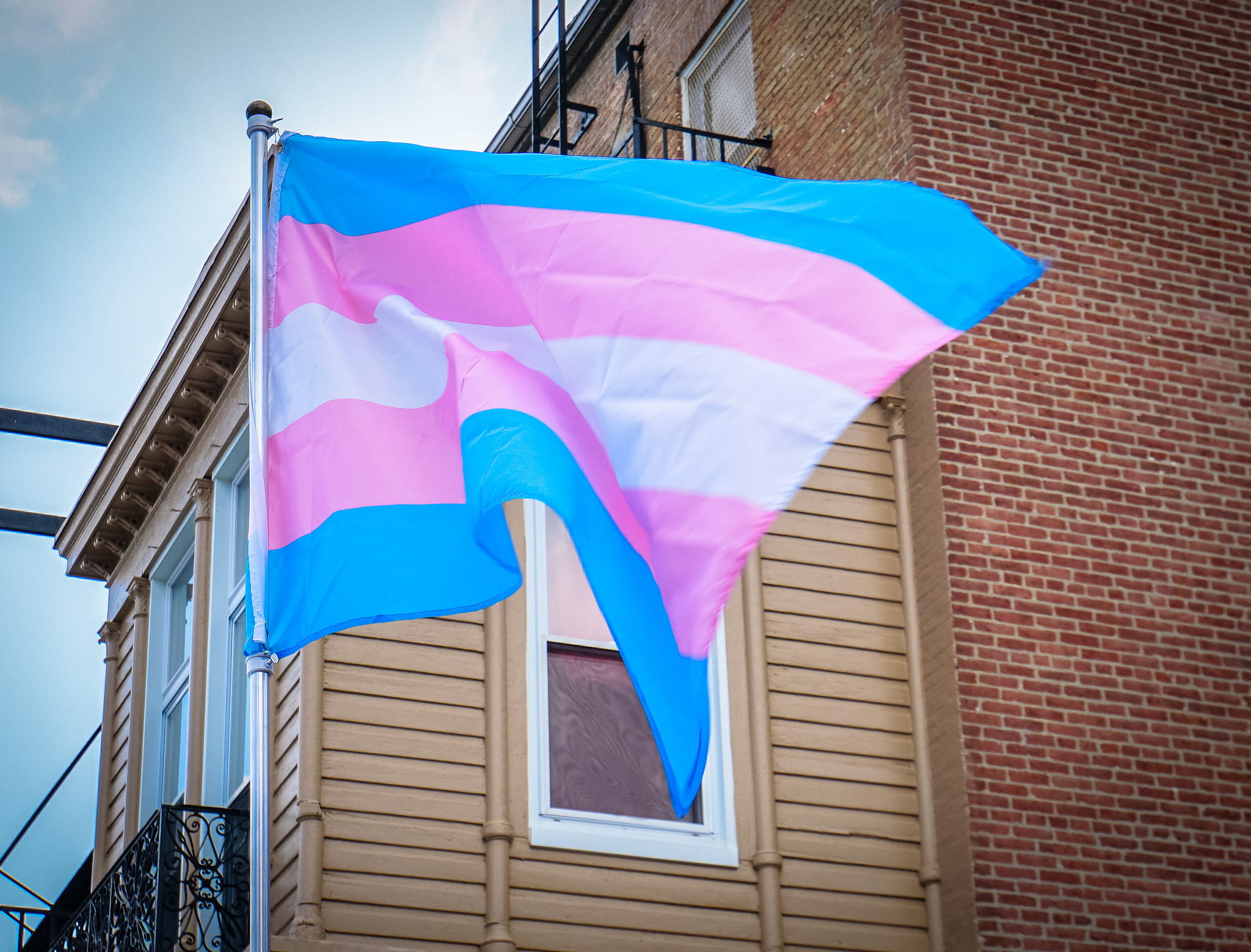 No More No Less: Basic Human Rights are Transgender Rights