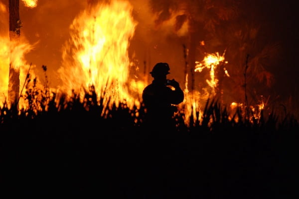 The  Causes and Consequences of California's Wildfires