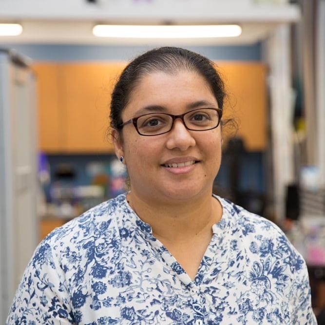 Anjana Bhat