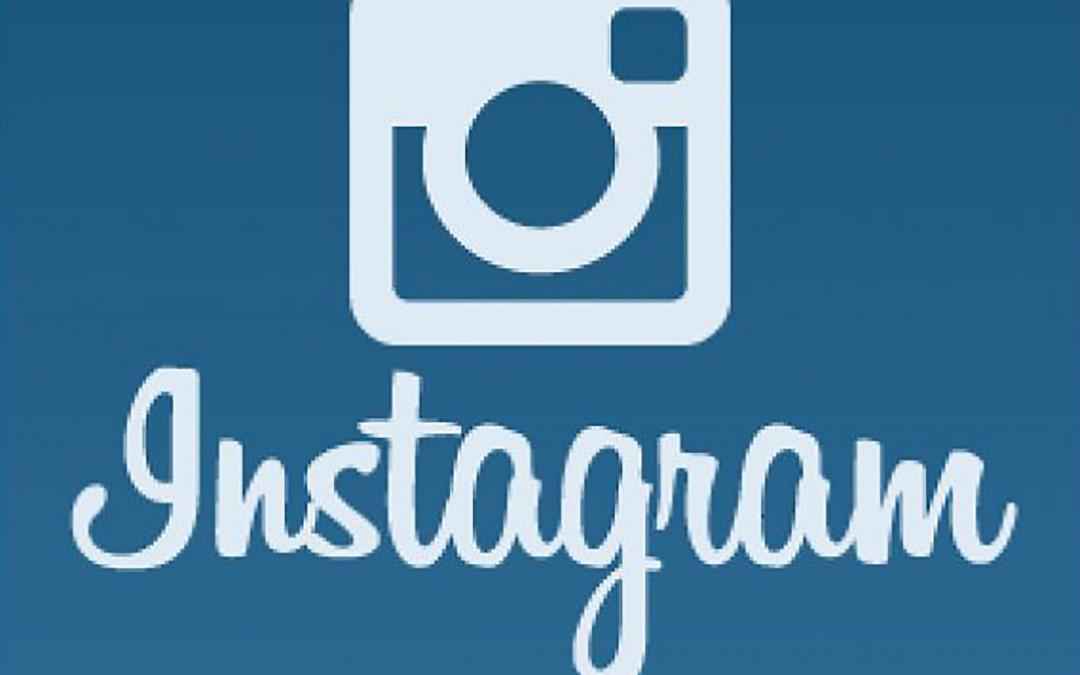 BHAN Advising Instagram!