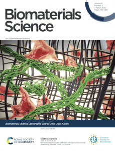 cover art showing Hierarchically structured hydrogels