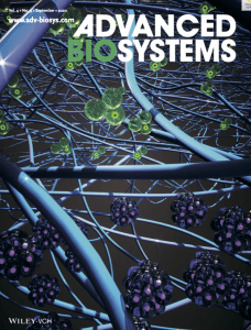 cover art illustrating breast cancer dormancy or activation in response to different matrix properties