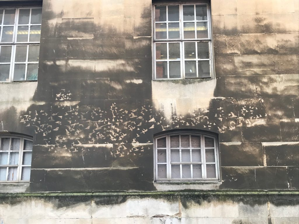 "One of two images of ""reverse graffiti"" bird flocks on the side of a former police station."