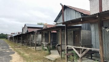 image of Shady Grove Methodist Campground. At least 13 concrete and wooden cabins on the right, extending into the distance