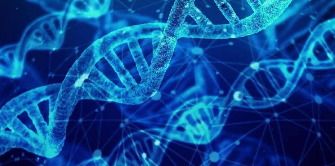 Chemistry Biology Interface Symposium May 12-13, 2020